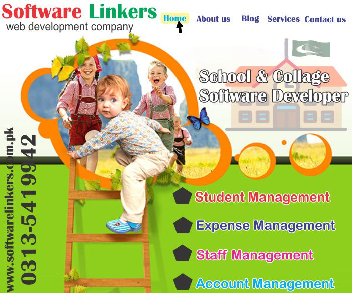 School & Collage Software Developer