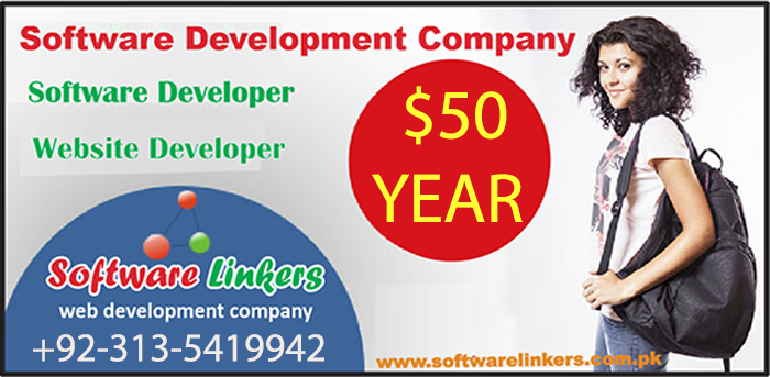 Software Development Company In Pakistan
